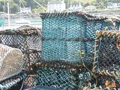 Fishing at Mallaig (bluesparks16) Tags: blue water scotland fishing village lobster ropes crabs nets mallaig crails