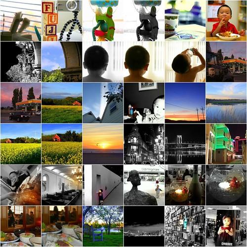 Picasa Samples Mosaic