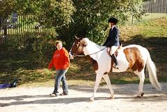 Joelle, Lowell & Kelly (leese104) Tags: show horses horse massachusetts hrc kelly joelle horseshow briggs hanover hanson lowell nikond40x
