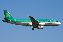 EI-DEM - 2411 - Aer Lingus - Airbus A320-214 - 100617 - Heathrow - Steven Gray - IMG_3846