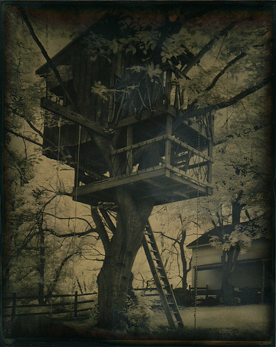 Tree House Tintype by isvibilsky