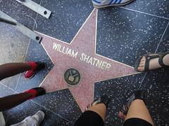 Shatner!