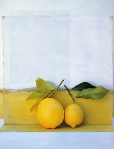 rustic lemon scene