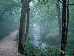 Magic Path (cindy47452) Tags: mist fog creek path magic indiana 100views 400views 300views 200views mitchell 500views 800views 600views 700views millcreek 1000views naturesfinest dnr piratetreasure lawrencecounty 900views 1100views 1200views 1300views 1800views 1500views 1400views springmillstatepark 1600views 1700views specnature 1900views excapture hamercave bachspicsgallery increek