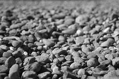 Pebbles (travel_bug_101) Tags: bw nature monochrome rock stone paul blackwhite dof pebble travelbug 2007 tait httpvoyageredbubblecom
