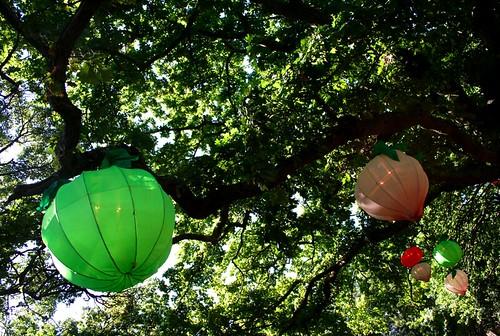 albert park lantern festival chinese new year