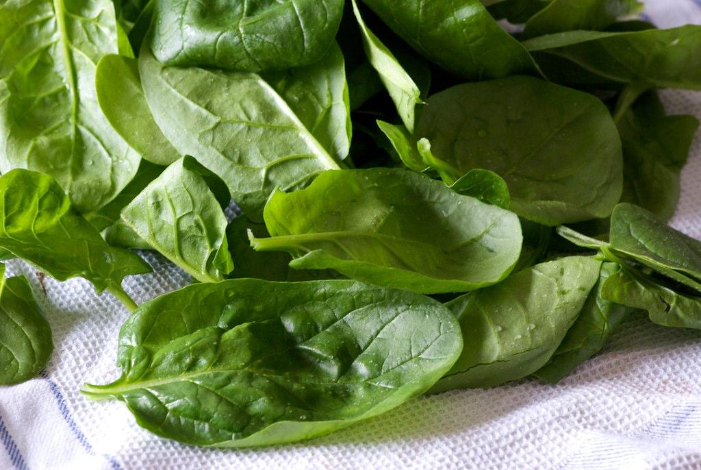 legumes a planter au mois de mai