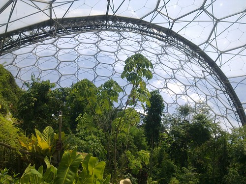 Inside the tropical biome at the Eden Project