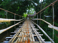 On the Footbridge (Storm Crypt) Tags: tourism river philippines bohol pilipinas loboc lobocriver philippinetourism ecotours
