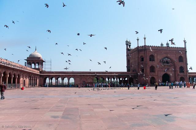 RYALE_New_Delhi_42
