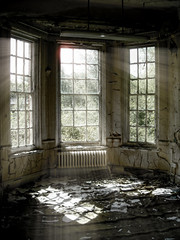 Bay window (sj9966) Tags: old urban abandoned broken glass hospital hall peeling paint decay burnt forgotten rotten lunatic asylum derelict epsom decayed decaying mental urbex