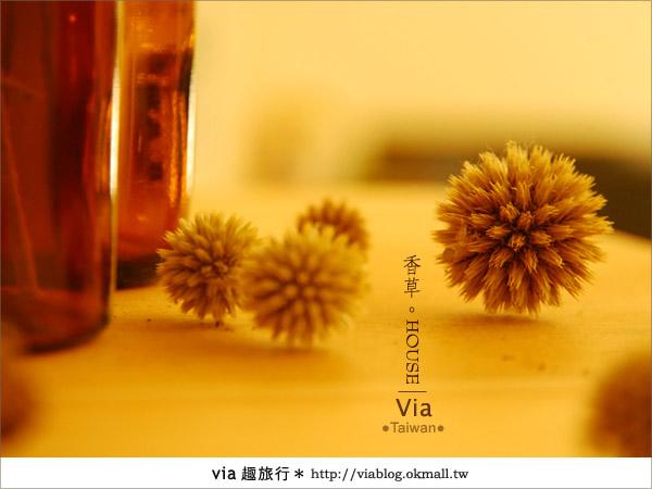 【新社】香草HOUSE~新社薰衣草森林最新溫暖系民宿(上)25