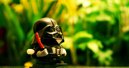 Darth in the Jungle