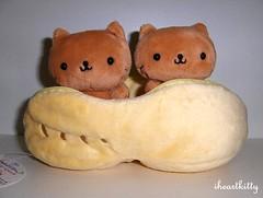 nyanko peanut plush (iheartkitty) Tags: plush kawaii peanut sanx nyanko iheartkitty