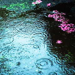 sad rain by yu+ichiro on flickr