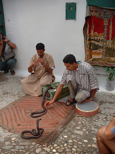 Snake Charmer in Marrakech