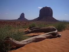 Monument Valley (monchoparis) Tags: landscape paisaje western navajo monumentvalley tronco paisage