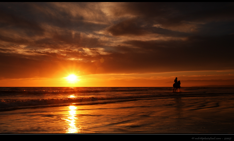 beach sunset horse santa barbara california photofool