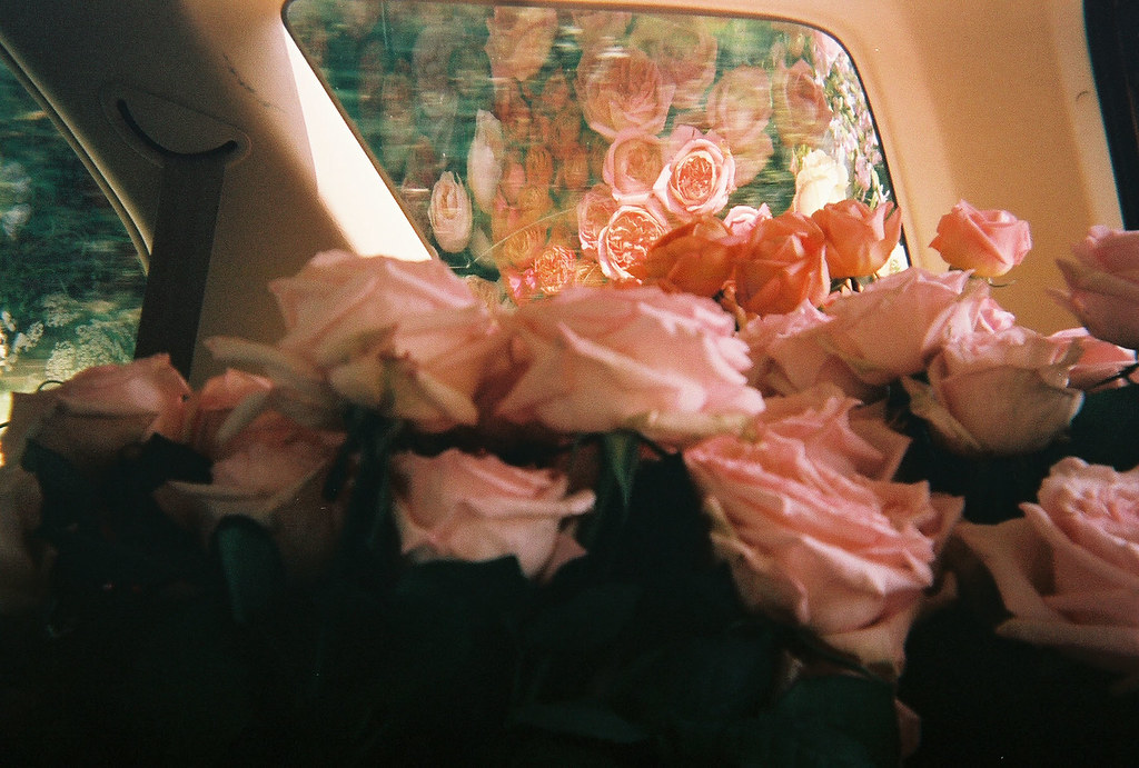 flowers in car 2