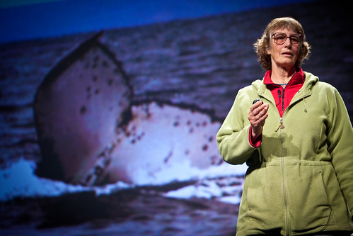 Gale McCullough - PopTech 2010 - Camden, Maine