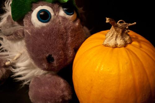56/365 Halloween se inventó en Irlanda