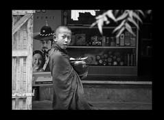 cool monk... (Adrian in Bangkok) Tags: life street people asian nikon asia burma documentary myanmar nikkor doco d90