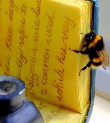 Eric the bee (Steel Steve) Tags: bee supershot 25faves diamondclassphotographer oraclex