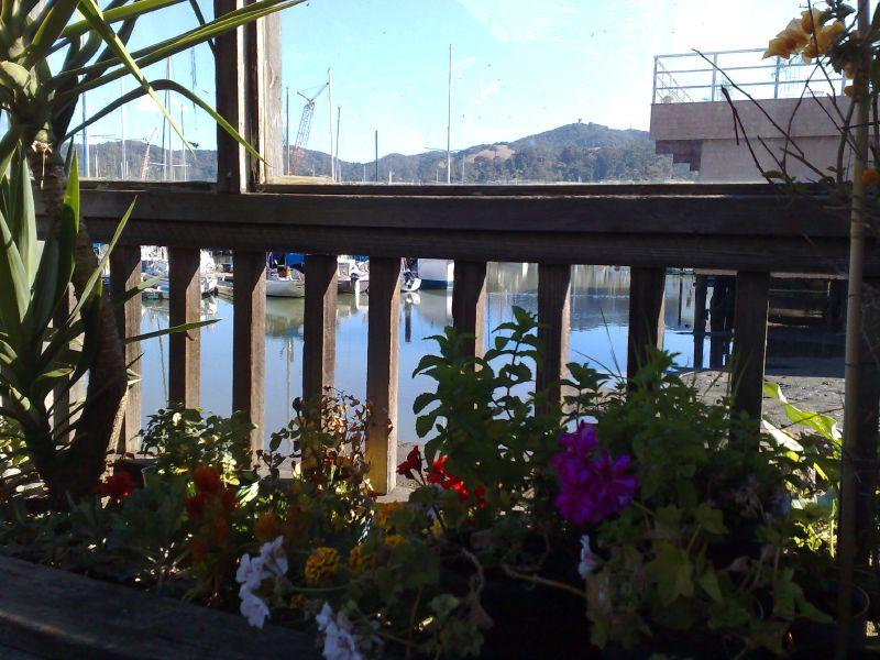 Pier 15 Deck
