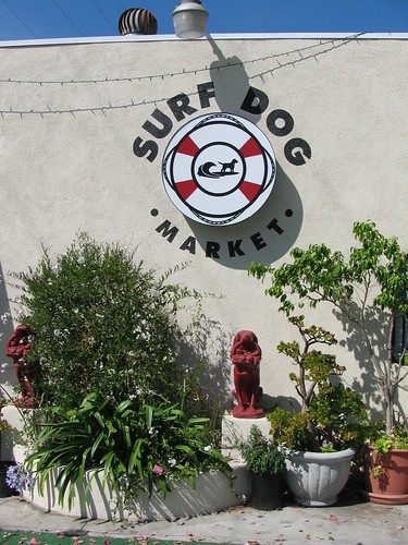 Surf Dog Market