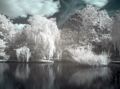 beta (GaryTumilty) Tags: blue trees white green water silver reflections ir pond infrared middlesbrough hdr stewartpark boro s9600