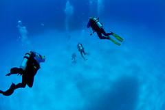 descent7690pcw (gerb) Tags: blue topf25 beautiful topv111 510fav wow topv555 topv333 underwater 500v20f topv1111 topv999 scuba fv5 loveit pi topv777 diver d200 bahamas topv3333 aquatica 105mmf28gfisheye 3waychallenge 3wc tvx abigfave 3w5 top20blue grandemaregroup