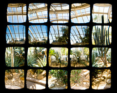 Dry House (bubblebottle polyptych) - by Pete Ashton