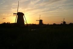 Mulini di Zaandam