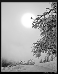 Halo (LilFr38) Tags: winter sun mist mountain snow france tree montagne soleil hiver halo depechemode neige arbre canonef1740mmf4lusm brume ancelle hautesalpes champsaur canoneos400drebelxti lesvallons lilfr38 qualitypixels