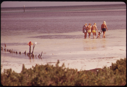 Tourists at the Public Beach near Long Key in the Central Florida Keys.