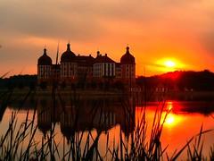 Chateau Moritzburg - sunset -