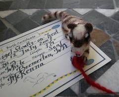 Nigel certificate