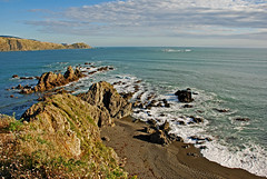 Wellington Harbour Entrance from the cliffs above Breaker Bay - by PhillipC