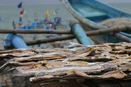 Drying fish in Pangandaran...
