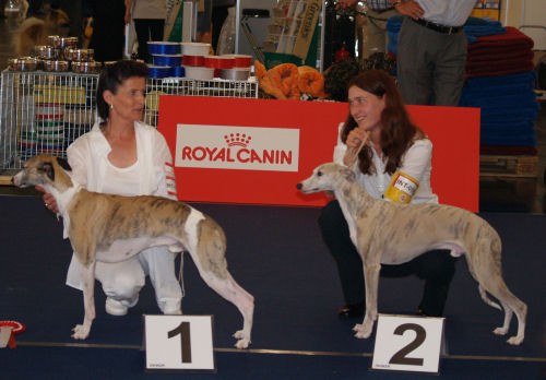 Rueden Championkl4