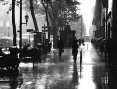 Many thanks to the rain