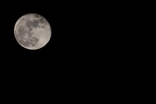 42/365 - Moon