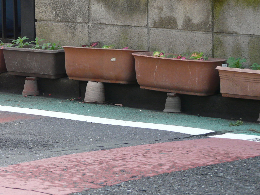 Curbside Planting Technique