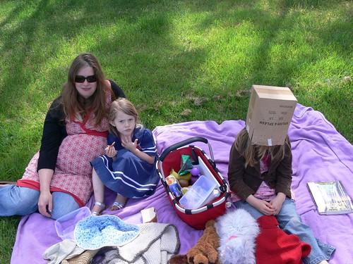 picnic auds