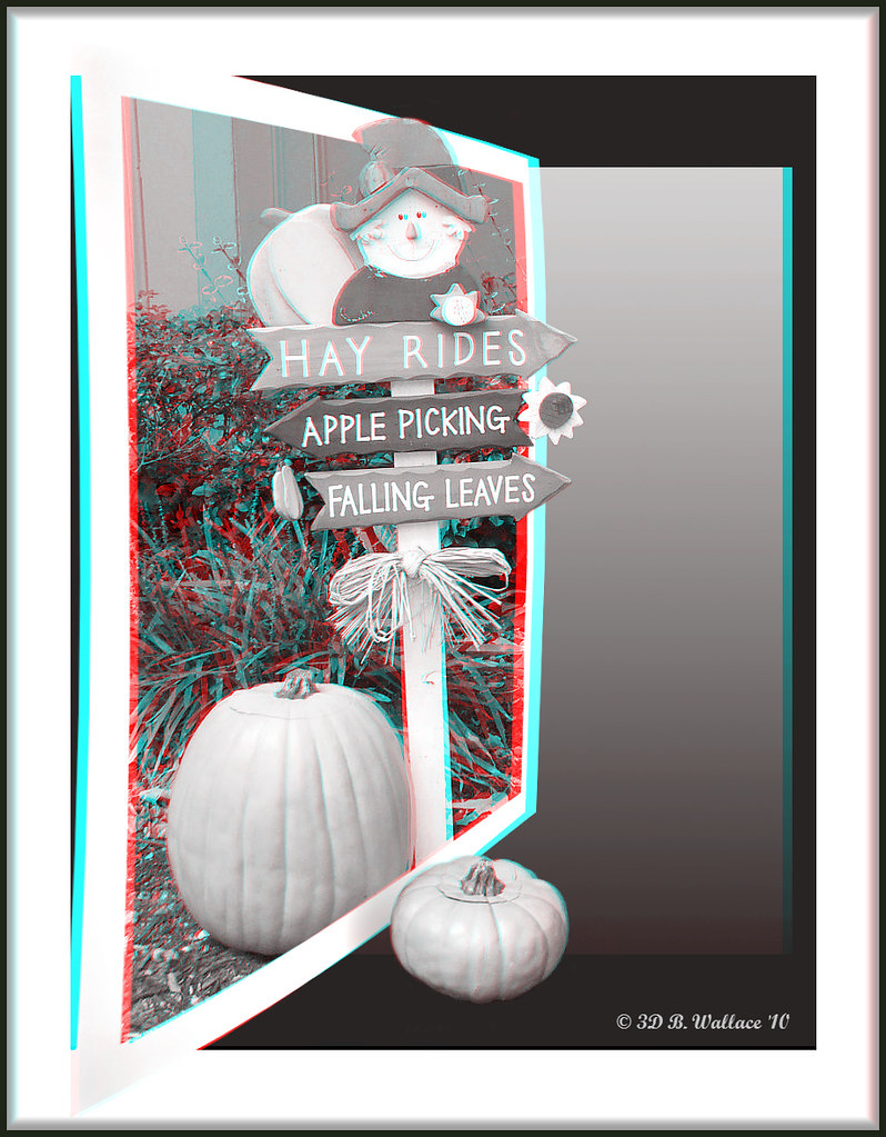 Happy Halloween! (3D Anaglyph Grayscale Version)