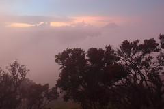Dawn at Bromo-Tengger-Semeru National Park (khengsiong) Tags: mountain indonesia volcano java gunung bromo semeru tenggercaldera