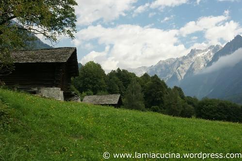 Val Bregaglia 0_2010 09 04_9610