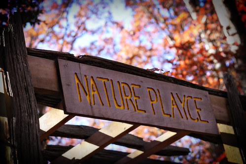 nature playce