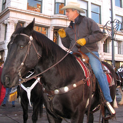 Colorado Governor Bill Ritter (Colorado Sands) Tags: horses horse usa america caballo cheval us colorado unitedstates denver parade governor american politicians americans politician leader cavalos amerika pferde cavalli cavallo democrat equestrian horseback kuda equine chevaux billritter governors  17thstreet 2011 milehighcity atlar sandraleidholdt stateofcolorado stockshowparade cityandcountyofdenver billritterjr leidholdt sandyleidholdt coloradonatives augustwilliamritter democraticgovernors