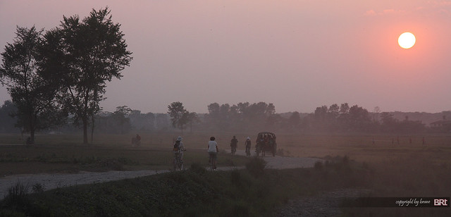 cycling_in_Chitwan